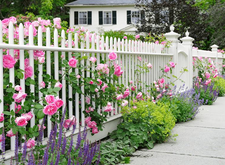 Beautiful Garden Fence Ideas | Gayvillage